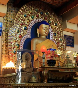 Buddha idol in TsuglagKhang temple