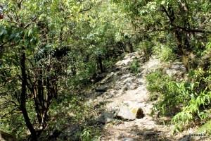 Path to Dharmkot waterfall